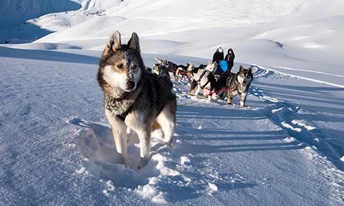 Wintervakantie in Champsaur & Valgaudemar (Hautes-Alpes)