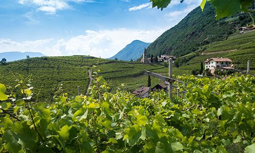 Bloggerstrip Zuid-Tirol