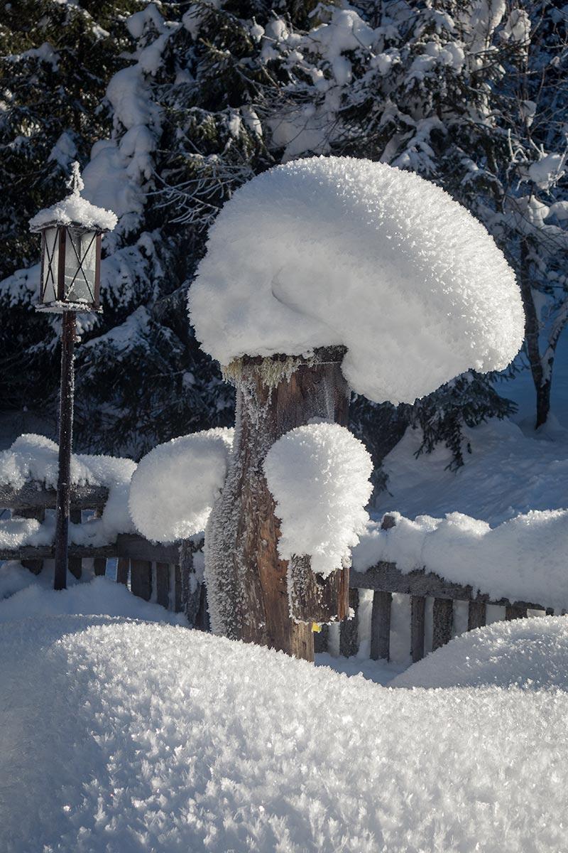 Hopen sneeuw!
