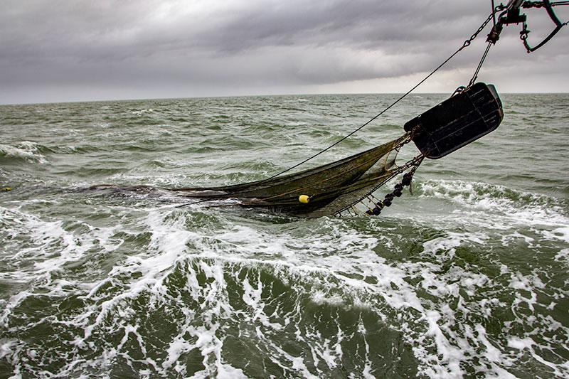 Garnalen vissen met TX10