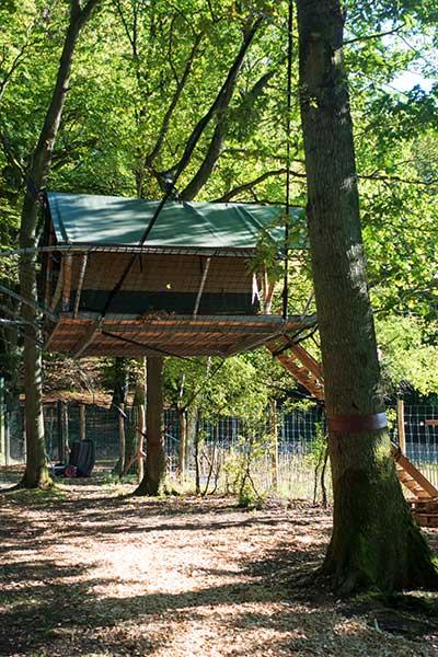 Tree Tent wildpark Grotten van Han