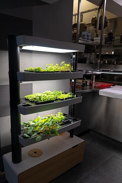 Open keuken Alain Bianchin